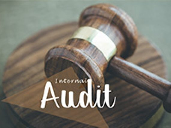Internal Audit Services